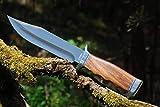 VIKING GEAR klassisches Messer - Einhandmesser 23cm - Gürtelmesser - Jagdmesser - Arbeitsmesser - Gartenarbeit - Survival - Freizeit - Messer - Prepper Knifer - Holster,schwarz - Messer Silber,braun